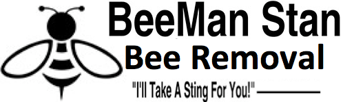 BeeMan Stan Bee Removal